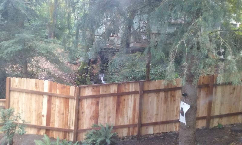 SUBMITTED PHOTO - A stream is barely visible from Patricia Webb's house now that her neighbor has put up a fence.