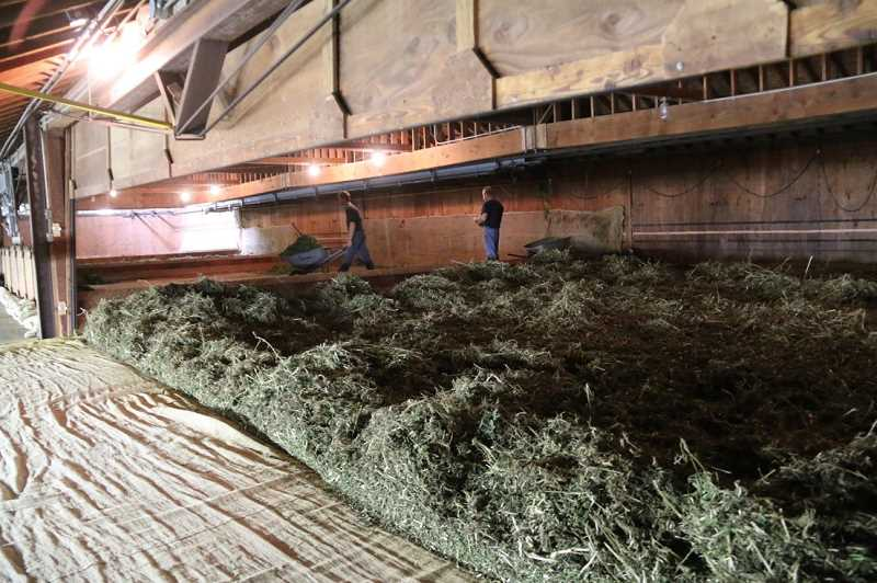 COURTESY PHOTO: IVERSON FAMILY FARMS - Since the hemp industry in Oregon is so new, the Iverson family has had to improvise a lot of its hemp production methods. That includes using a nearby hop dryer (pictured) to dry and preserve the crop.