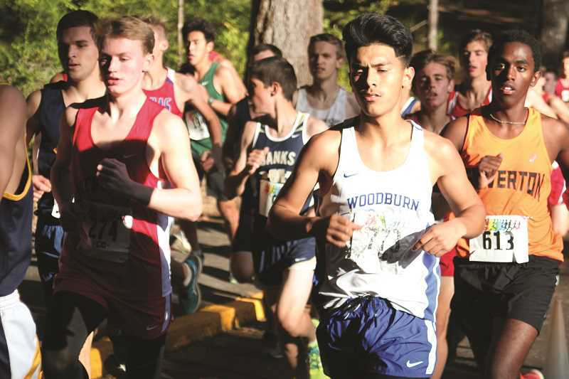 PHIL HAWKINS - Junior Aldo Sanchez made his varsity cross country debut with the Woodburn Bulldogs last week at the Silver Falls Oktoberfest Invitational on Sept. 13 and followed up on Sept. 20 at Willamette Mission State Park. Sanchez has been the Bulldogs' top finisher in each race.