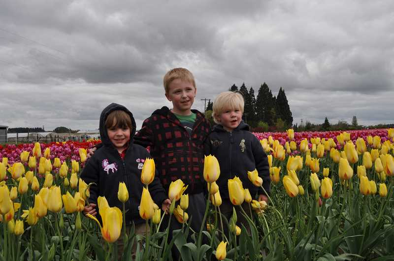 SUBMITTED PHOTO - Friends Griffin Reim (left), Henry Thurman (middle), and Rowan Reim (right) enjoy the tulips back when they were first-graders.