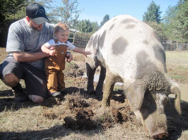CONTRIBUTED PHOTO - A young cider squeeze attendee makes a new four-legged friend at Out to Pasture animal sanctuary.