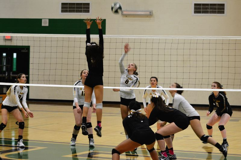 SPOTLIGHT PHOTO: JAKE MCNEAL - Lions freshman outside hitter Savannah Moore (8) tips a shot over the net.