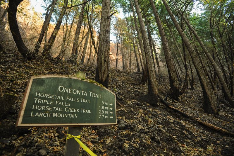 OUTLOOK PHOTO: JOSH KULLA - The popular and heavily used Oneonta Trail was heavily damaged by the Eagle Creek Fire and is one of many Gorge spots that will remain closed possibly as long as through 2018.
