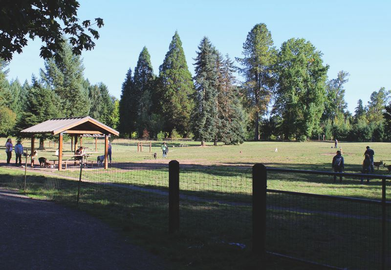 SPOKESMAN PHOTO: CLAIRE GREEN - The dog park, currently located next to the disc golf course in Memorial Park, is likely going to be moved next to the community garden at the end of Schroeder Way. But many Schroeder residents have traffic concerns.