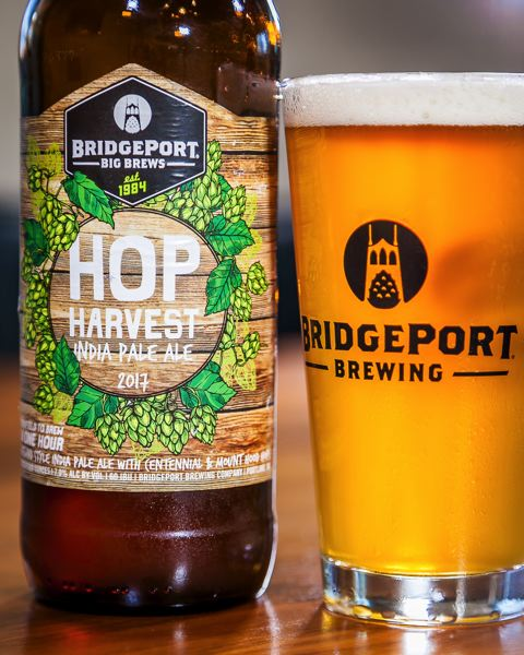 COURTESY PHOTO - Portland's BridgePort Brewing, which puts on HoptoberFest PDX Oct. 28, uses farm-fresh hops that go from the field to the bottle in one hour.