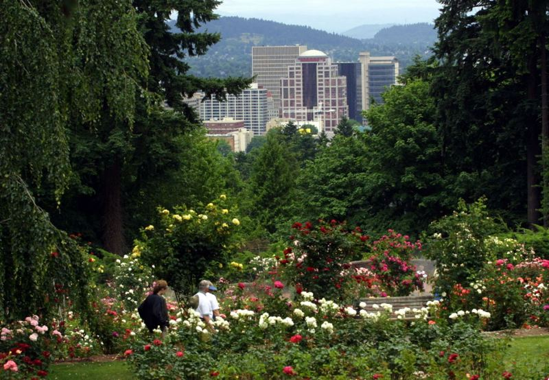 PAMPLIN MEDIA GROUP FILE PHOTO - Couples who want to get a permit for a 2018 wedding in a city park, like Washington Park, will have to jump into a lottery beginning in mid-November. A Portland Building renovation project forced the city's Permit Center into smaller quarters, ending the long January lines for park wedding permits.