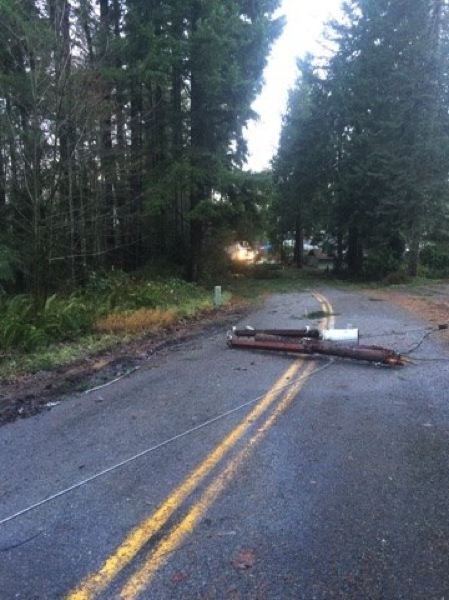 COLUMBIA RIVER PUD PHOTO - In this 2016 photo, line crews with Columbia River PUD respond to downed power lines in Rainier, after heavy winds hit the county, causing tree branches to take out power lines.