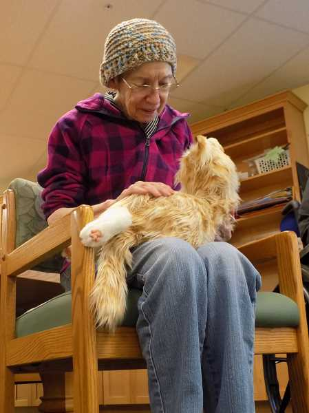 GAZETTE PHOTO: RAY PITZ - Theda Clinton assures Cuddles the robotic cat that shes still there for the robotic animal with soft fur.
