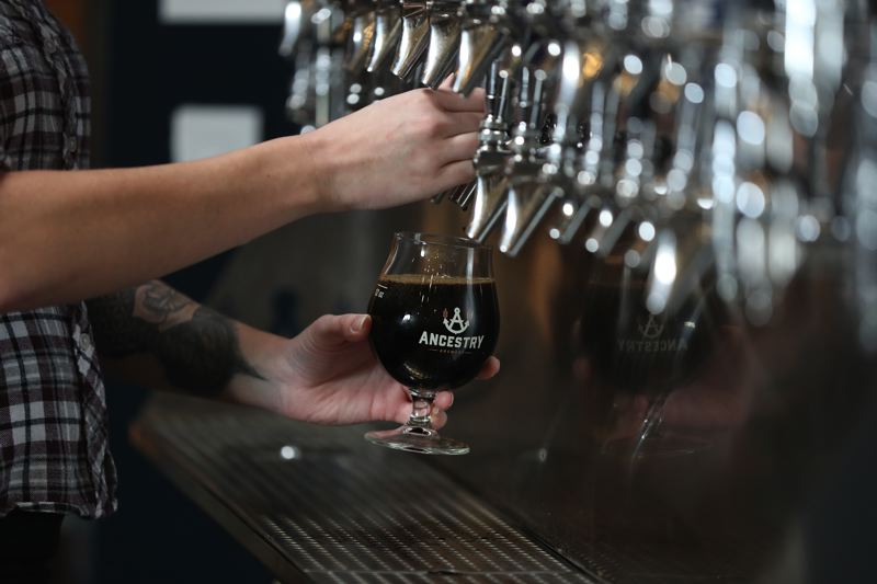 TIMES PHOTO: JAIME VALDEZ - A goblet of Horchata Winter Stout is poured at Ancestry Brewing in Tualatin. The stout has been specially made for the Holiday Ale Festival in Portland and will be available on tap at Ancestry once the festival opens next Wednesday.