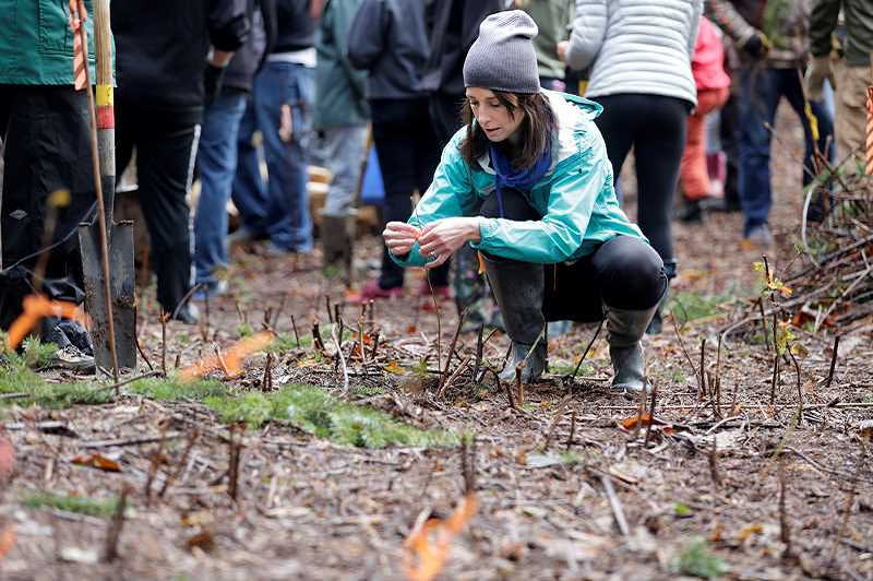 TIMES FILE PHOTO - Jessica Borg volunteers for Put Down Roots in Tualatin in Ibach Park.