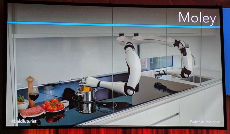 COURTESY: THE BALD FUTURIST - The Moley can be programmed to cook like Wolfgang Puck.