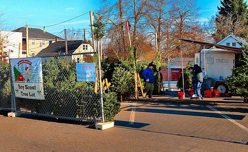 DAVID F. ASHTON  - After rallying from their burglary losses, with the help of generous donations from the community, the Boy Scout Troop 351 Christmas Tree lot remains open in Westmoreland.
