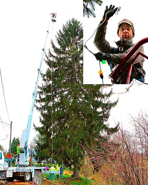 DAVID F. ASHTON - On tree-decorating day, the intrepid Matt Hainley (inset) again rode the bucket, taking strings of new LED lights to the top of the SMILE Christmas Tree at the edge of Oaks Bottom, on the Bybee Curve.