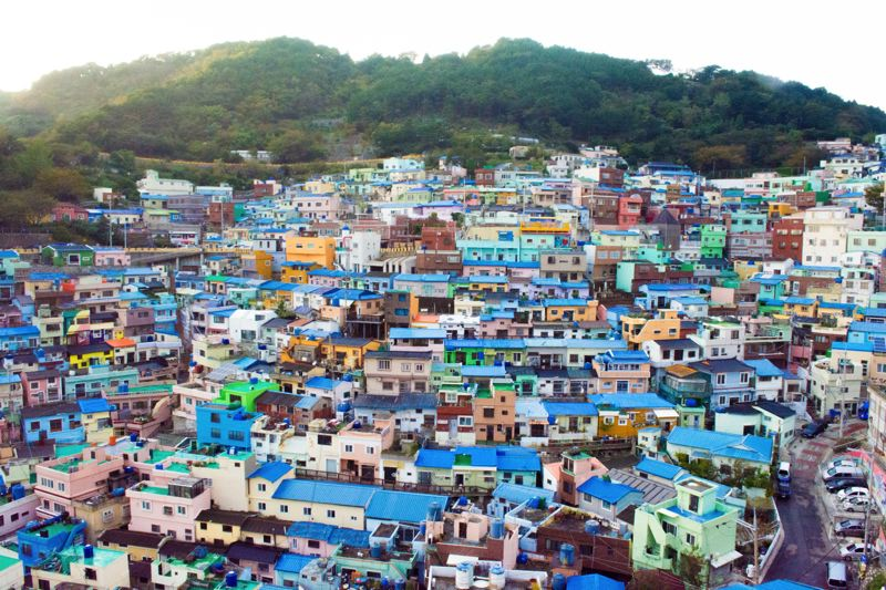 PHOTO BY SAIRA BRADNER - Packed together houses, many with distinctive blue roofs, follow the contours of the hills in Busan, South Korea.