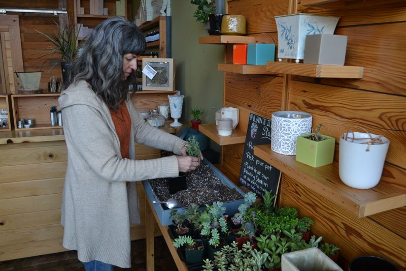 PHOTO BY: RAYMOND RENDLEMAN - Branda Tiffany demonstrates how her shop in Milwaukie offers house plants and customized pots for sale.