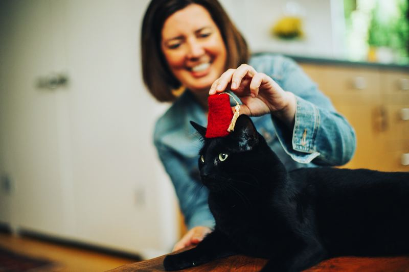 PHOTOS: COURTESY THE GRAND POOBOX - A prototype of Courtney Karsted's Grand PooBox invention, designed to prevent cats from tracking litter outside the box.