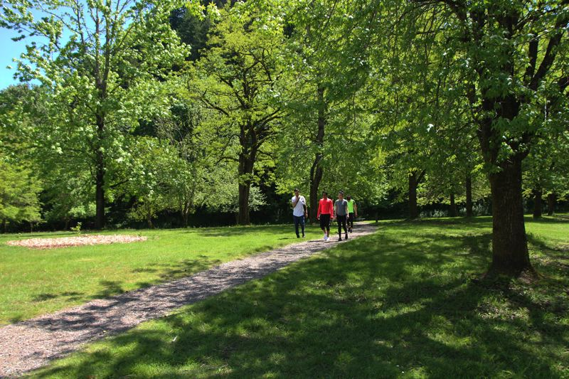 CONTRIBUTED PHOTO: OREGON STATE PARKS - Hikers at Lewis and Clark State Recreation Area enjoy a quick jaunt in the tree-lined park.