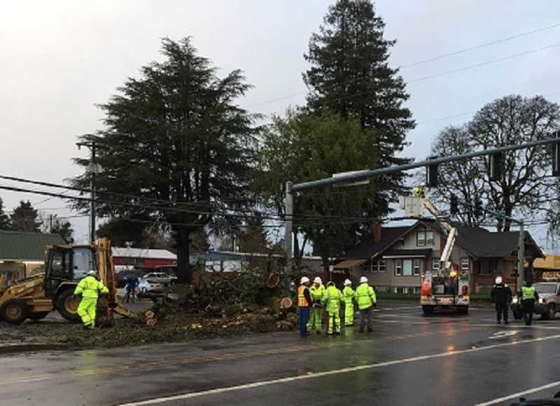 COURTESY KOIN 6 NEWS - Public works crews work to clear a fallen tree at the corner of First Avenue and Walnut Street on Thursday afternoon.