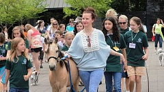 Photo Credit: SUBMITTED PHOTO - Betsy Reis walks Oatis, Lake Oswego Hunts pony, through Millennium Plaza Park. Pets of all kinds are welcome to attend Betsys Pet Parade and Woofstock, which is scheduled for Sept. 7.