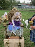 Photo Credit: FILE PHOTO - Tigards Halloween Canine Costume Contest at Potso Dog Park kicks off this Saturday, rain or shine. The event is popular among dog owners and will be judged by Mayor John L. Cook and Rep. Margaret Doherty.