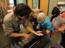 Photo Credit: COURTESY PHOTO: THPRD - Visitors will learn about the adaptations of newts and other forest inhabitants at indoor exhibits and interactive activities hosted by the park district's nature experts.