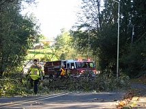 Photo Credit: GAZETTE PHOTO: RAY PITZ - Tualatin Valley Fire & Rescue crews (along with Sherwood police) removed a down tree that came down due to high winds on Nov. 11 blocking two lanes of Meinecke Road.