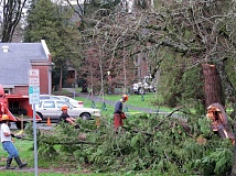 Photo Credit: NEWS-TIMES PHOTO: DOUG BURKHARDT - On Friday morning, the day after the Dec. 11 windstorm, crews were out around Washington County, restoring electricity to neighborhoods and removing downed trees. This crew was working to clear a fallen cedar tree on the Pacific University campus in Forest Grove.