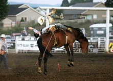JIM BESEDA/MOLALLA PIONEER - Big Bend Rodeo's Cajun Queen took bareback rider Hunter Carter for an 81-point ride at Wednesday's 92nd Molalla Buckeroo PRCA Rodeo.