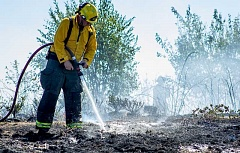 HILLSBORO TRIBUNE PHOTO: TRAVIS LOOSE - A firefighter sprays water on a fire that started with a single spark at Dimeo Farms south of Hillsboro Thursday afternoon.