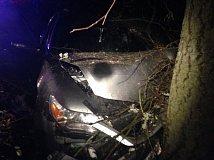 CLACKAMAS COUNTY SHERIFF'S OFFICE - Washington County Sheriff's deputies used a Tigard K9 to track down and arrest the driver of this 2009 Acura that crashed into a tree near Sherwood.