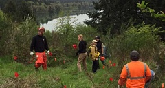 COURTESY PHOTO - An inmate work crew supervised by the Washington County Sheriffs Office provided some much-needed, no-cost labor for the butterfly preservation project at Hagg Lake last week.