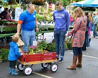 SUBMITTED PHOTO - Visitors to last year's Annie Ross House plant sale were able to buy plants at deep discounts. The sale will be held at a new location this year, at at the Adams Street connector, located between Main Street and 21st Avenue, in Milwaukie.