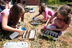 SUBMITTED PHOTO - Children nurture seedlings planted in egg cartons at Schoolyard Farms, at Candy Lane Elementary School. The farm will hold an open house on Saturday, May 21.