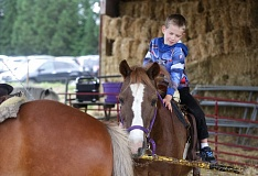 TIMES PHOTO: JONATHAN HOUSE - David Oppenheimer enjoys a pony ride at Lee Farms on Friday.