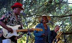 PHOTO COURTESY OF PORTLAND PARKS AND RECREATION - Willamette Park will host four free concerts this summer as part of Portland Parks and Recreation's Summer Free-For-All.