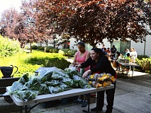 PHOTO BY ANYI WONG-LIFTON - Volunteers Ana Galicia (left) and Maria Reyes (right) arrange parsley for shoppers to pick up along with other produce and dry foods at Clackamas Service Center's Harvest Share program.