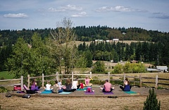 SUBMITTED PHOTO - Yoga instructor Laura Barbur leads a class at last year's Family Yoga Festival; participants were both children and adults and took inspiration from the beautiful backdrop at Kings Raven Winery.