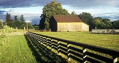 The historic Donald Munson Barn in Champoeg will fittingly be the venue for a workshop about barn preservation. Restore Oregon, a statewide advocacy group, will present the program in October.