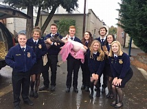 COURTESY OF SHS FFA - Members of Sherwood High Schools Future Farmers of America hold two baby pigs that made the rounds at local businesses as part of the annual Pass the Pig fundraiser for the Oregon Food Bank.