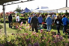 SUBMITTED PHOTO  - Its that time again,  as the Clackamas County Master Gardeners put on their annual spring garden fair May 6-7 in Canby.