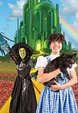 SUBMITTED PHOTO  - Ronni Lee plays Dorothy in Northwest Childrens Theater's production of The Wizard of Oz, running Dec. 3 through Jan. 1.