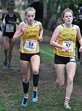 TIDINGS FILE PHOTO -  West Linn's Katy Burkhartzmeyer and Johanna Briscoe ran side by side for much of the year, and joined each other on the all-Three Rivers League cross country team, too.