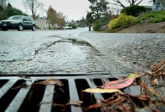 TIDINGS PHOTO: VERN UYETAKE - The City's stormwater system held up through a busy winter. Now West Linn will look to the future — and the climate change that may come with it — as it develops an updated stormwater master plan.