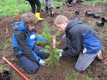 PHOTO BY ELLEN SPITALERI - Twins Ben and Jake Harvey plant a fir tree during the Rock Creek Watershed Wide event in March of 2015. This year's event takes place on March 11 at various sites in Happy Valley.