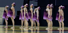 J. BRIAN MONIHAN - The Wilsonville High School Pride Dance Team finished 6th overall at the 2017 OSAA Class 5A State Dance Championship.