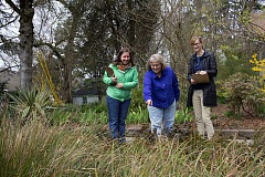 PHOTO COURTESY OF THE AUDUBON SOCIETY OF PORTLAND  - Audubon Society of Portland Backyard Habitat Program Manager Nikkie West, (from left) Milwaukie City Council President Lisa Batey and Columbia Land Trust Backyard Habitat Program Manager Susie Peterson walk through Batey's yard. To celebrate the program's expansion into Milwaukie, West Linn, Oak Grove and Jennings Lodge, the program recognized Batey's yard as a Certified Backyard Habitat March 27.