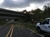SUBMITTED PHOTO: WEST LINN PUBLIC WORKS - Crews worked to clear debris near Blankenship Road and Interstate 205.